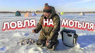 Дядя Фёдор ловит на мотыля Зимняя рыбалка на Печенежском водохранилище.