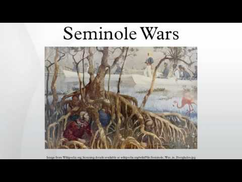 blackhawk war and seminole war Seminole wars part of american indian wars: a us marine boat expedition searching the everglades during the second seminole war.