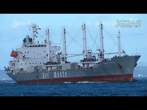 TOLEDO CARRIER 冷凍貨物船 Reefer Del Monte2019SEP