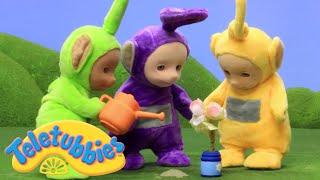 Teletubbies | Planting Flowers | Teletubbies Stop Motion | Cartoons for Children