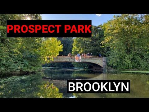 Exploring Prospect Park - Brooklyn, NYC