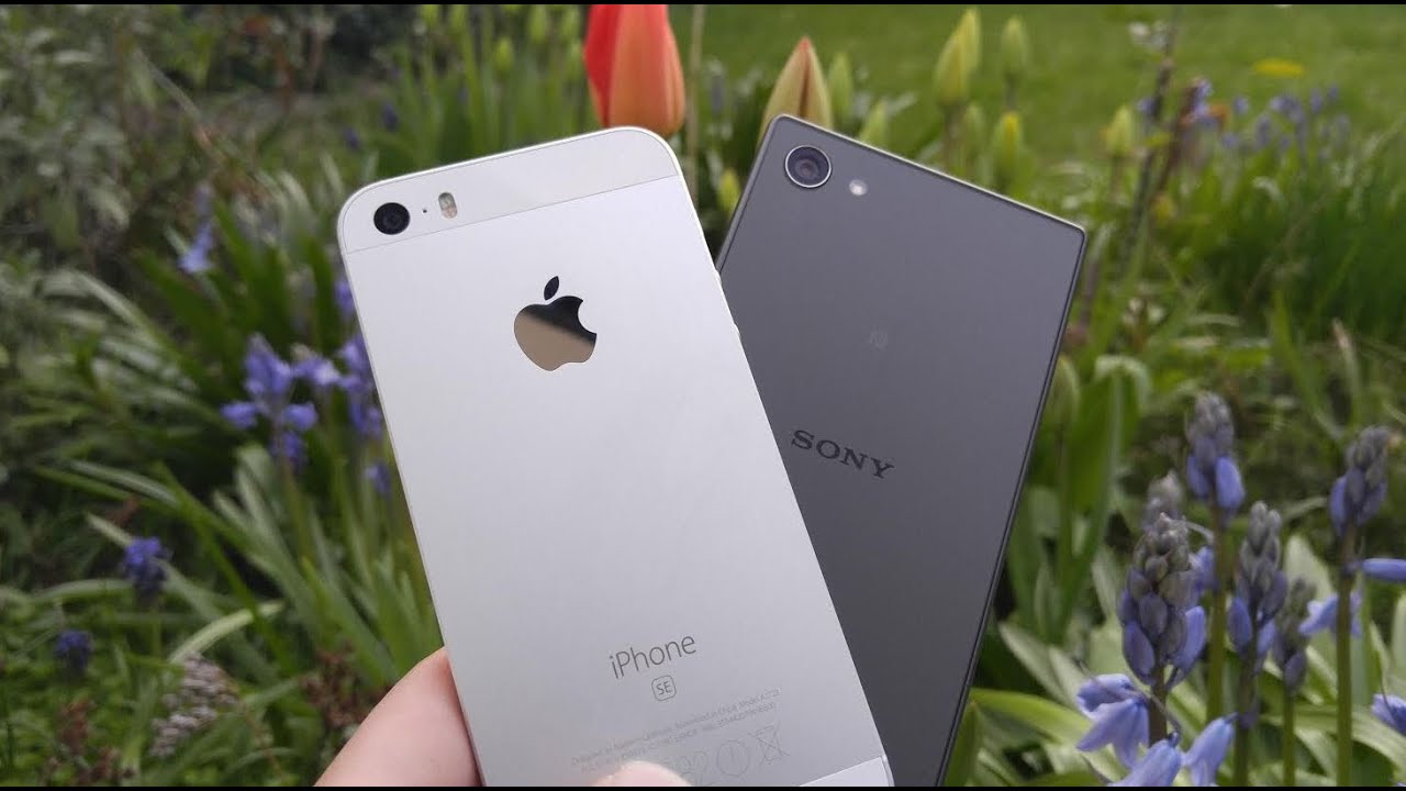 Sony Xperia Z5 Compact Vs Iphone Se