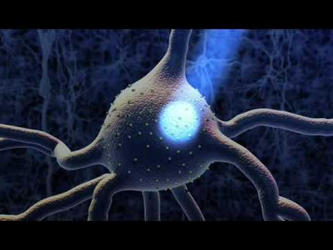 Optogenetics/Memory Manipulation/Mandela Effect