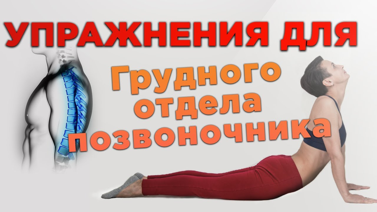 остеохондроз грудного отдела гимнастика видео любого сайта