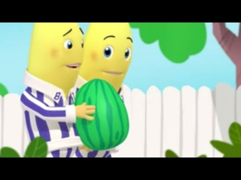 The Ping Pong Hiccups - Bananas in Pyjamas Full Episode - Bananas in Pyjamas Official