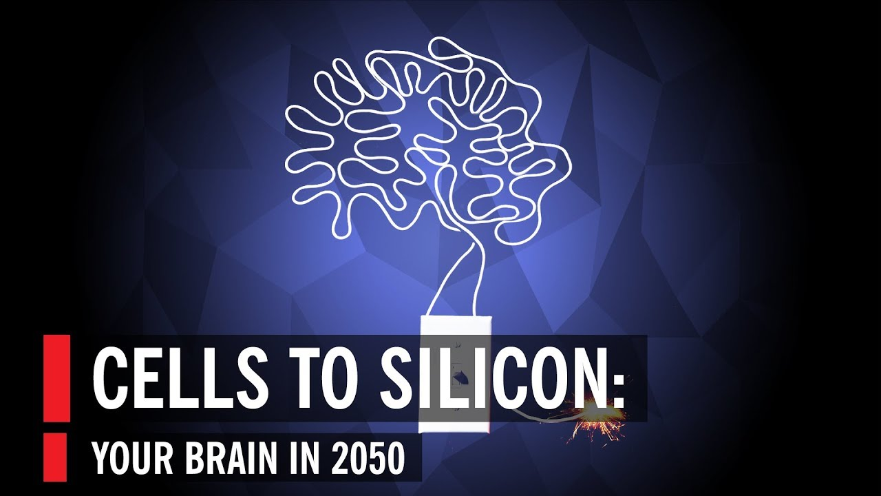 Cells To Silicon: Your Brain In 2050