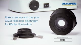 How to set up and use your CX23 field stop diaphragm for Köhler Illumination