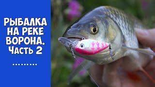 Рыбалка в Тамбовской области. Часть 2