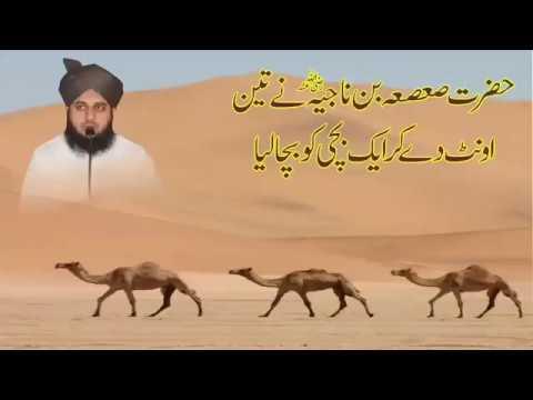 Muhammad Ajmal Raza Qadri By حضرت صعصعہ بن ناجیہ رضی اللہ عنہ نے تین اُنٹ دے کر ایک بچی کو بچایا۔  خ
