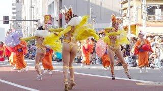 G.R.E.S. União dos Amadores at Asakusa Samba Carnival 2018 衣装のデ...