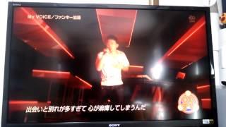 ファンキー加藤 My voice