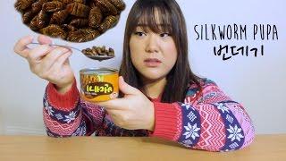 KOREANS EAT BEONDEGI | SILKWORM PUPA | 번데기 먹어보기