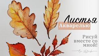 Тааак просто! 4 листика за 3 минуты! Осенние листья красками, осенний лист акварелью
