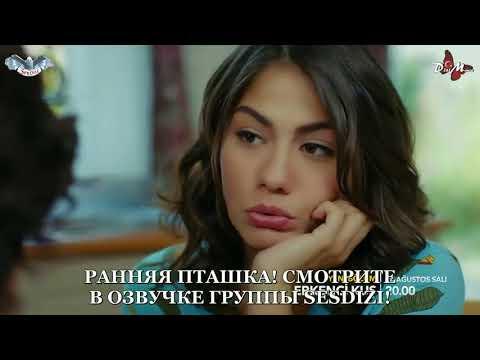 Ранняя Пташка 9 серия 2 фраг ДВУХГОЛОСАЯ ОЗВУЧКА 720 р