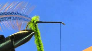 Beginner Fly Tying Tips - Part 3: The Woolley Worm