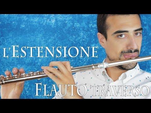 FLAUTO TRAVERSO - l'estensione dello strumento