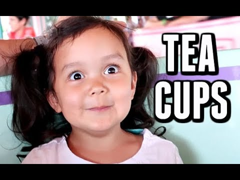 OUR REACTION TO THE TEA CUP RIDE -  ItsJudysLife Vlogs
