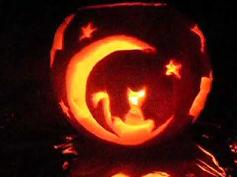 Pumpkin Lantern Cat On The Moon Youtube
