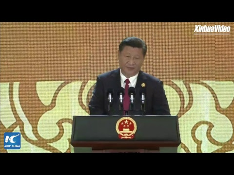 LIVE: Xi Jinping delivers speech at APEC CEO Summit