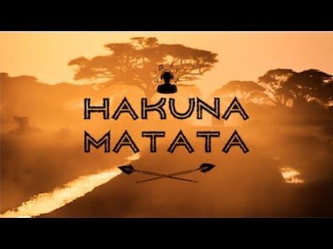 hakuna-matata---keith-peter-(cover/remix)