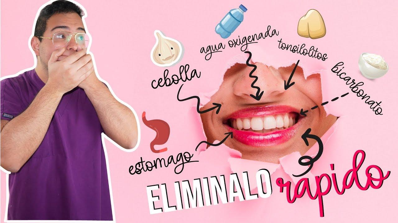 Como Quitar El Mal Aliento De La Boca 11 Tips Para Eliminar El Mal Olor Youtube