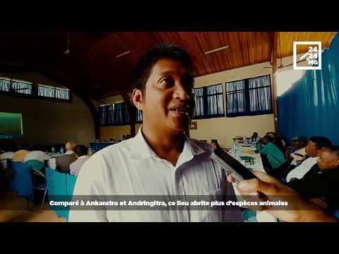 PROTECTION DE LA FORÊT D'AMBALAOMBY TSINJOARIVO