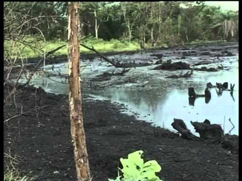 FG TO CLEAN UP OGONI LAND IN RIVER STATE