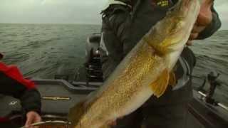 John Gillman on Ranger Boats for Big Water
