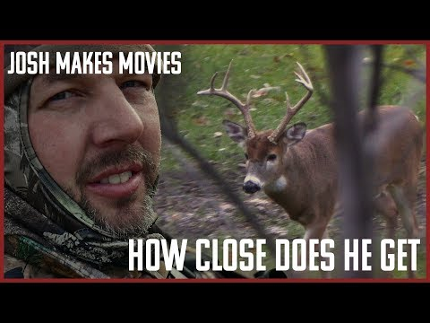 Michigan Deer Hunting The Rut Gets The Big Buck Close
