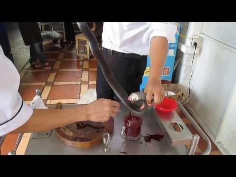 Mon an dac biet Ran Ho mang chua - Ran Cobra.