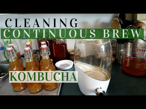 CLEANING CONTINUOUS BREW KOMBUCHA: too much yeast in my vessel