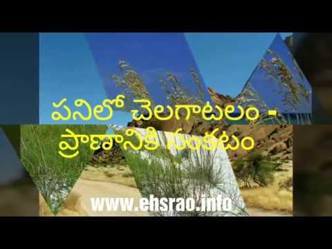 Telugu Safety Slogans Youtube