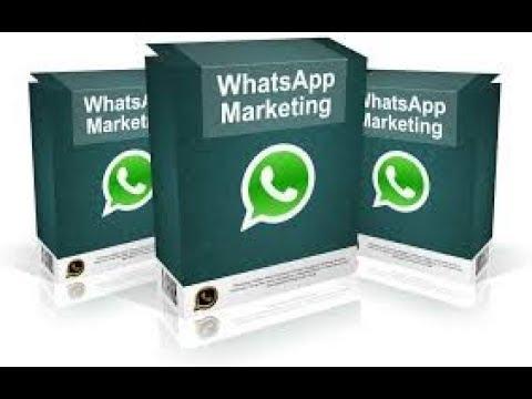 aplikasi-whatsapp-marketing-blaster