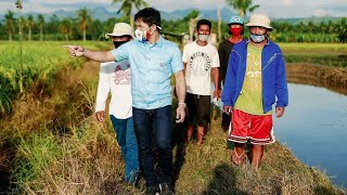 MANNY PACQUIAO VISITS RICE FARMERS