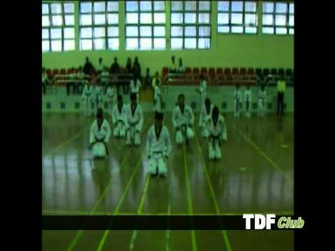 clip biểu diễn Taekwondo TDF Club