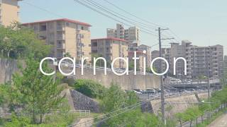 CARNATION 17th ALBUM『Suburban Baroque』収録曲 「Peanut Butter & Je...