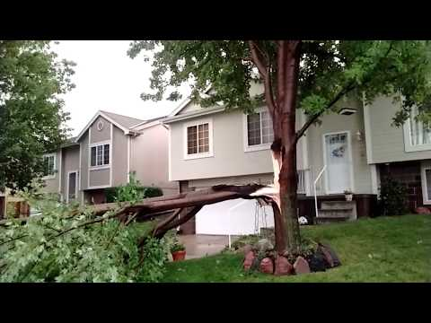 The Aftermath Of The Tornado That Left Snapped Trees, & Broken Fences (June 16, 2017 | Omaha NE)
