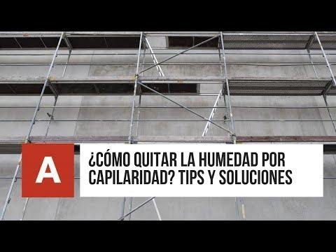 ▷ ¿Cómo quitar la Humedad en Muros? Tips y soluciones