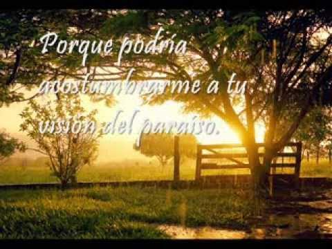 Mick Jagger - Vision of Paradise (traducida al español)