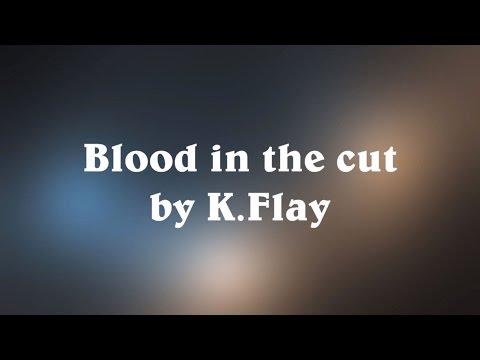 Blood in the Cut - K.Flay (Lyrics)