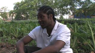 Learn About Urban Farming With NYC Non-Profit Added Value