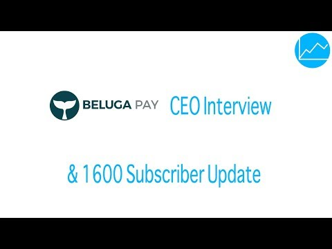 Interview mit BelugaPay ICO Alejandro Avila & Channel Update