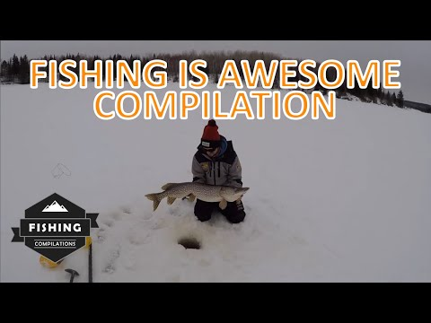 Fishing Is Awesome Compilation April 2020