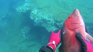 junio pesca submarina Fuerteventura 19