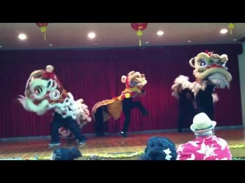 Maui Chinese Martial Arts Academy: Kung Fu Party 2013- LION DANCE