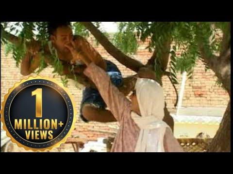 Bhua Da Yoga - Comedy Scenes Collection - Amrit Alam - Funny Clips