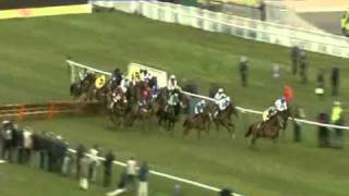 2011 Albert Bartlett Novices Hurdle