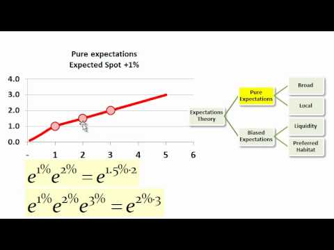 Expectation Theories of Yield Term Structures