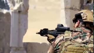 بالفيديو.. مفاجأة في مشاركة ملك الأردن في تدريبات بالذخيرة الحية - صحيفة صدى الالكترونية