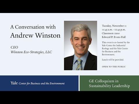 Andrew Winston, Winston Eco-Strategies